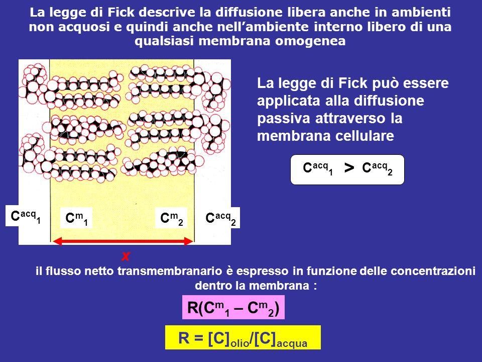> x R(Cm1 – Cm2) R = [C]olio/[C]acqua